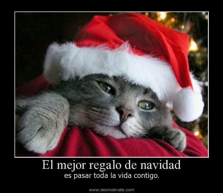 Frases El Mejor Regalo De Navidad.El Mejor Regalo De Navidad Desmotivate Com Frases Y