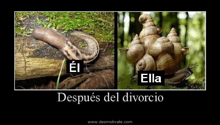 Después Del Divorcio Desmotivatecom Frases Y