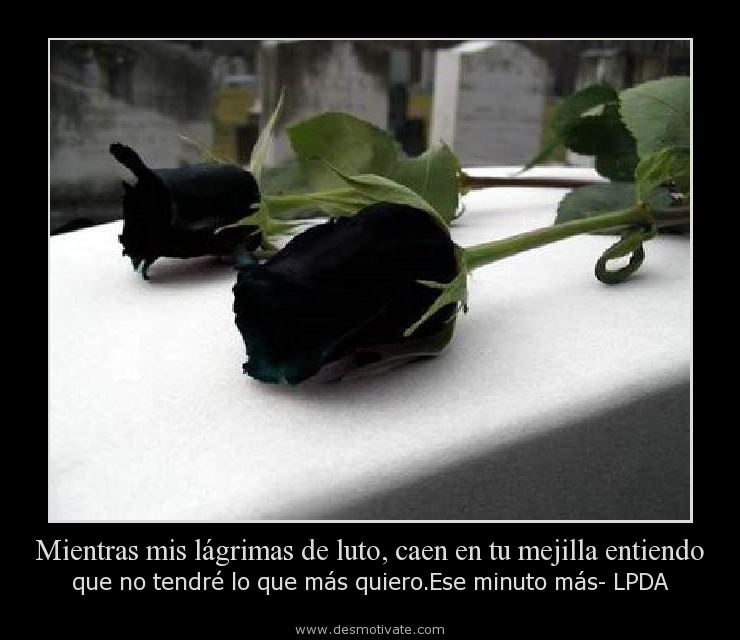 Fotos de luto para descargar gratis - Imagui